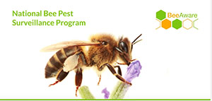 national-bee-pest-surveillance-program-video