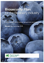 blueberry-ibp-cover