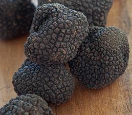 truffles-industry