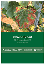 Exercise Fastidious Report