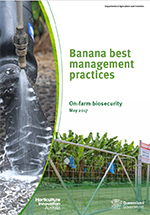 Banana Best Manageent Practices: On-farm Biosecurity